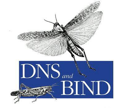 Introdução ao Servidor DNS Bind