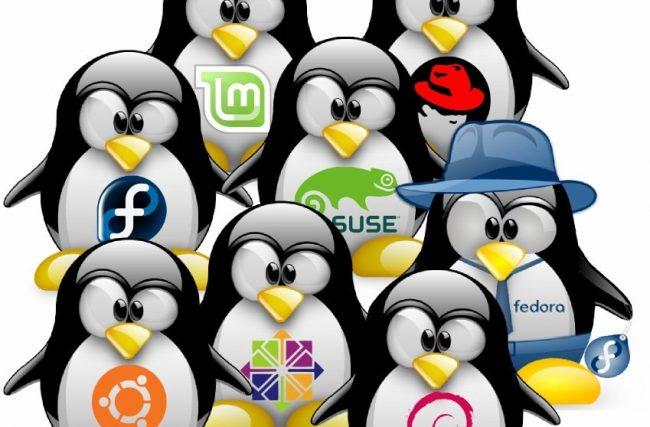 As 10 Melhores Distribuições Linux(a 1ª e a 5ª são as melhores para iniciantes)